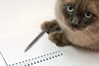 Bigstock_Cat_Pen_And_Blank_Open_Notepa_3480307