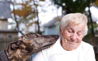 Bigstock-Senior-Lady-With-Greyhound-24941591