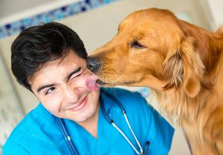 Bigstock-Cute-dog-giving-a-kiss-to-the--43915867
