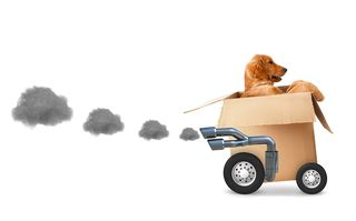 Bigstock-Dog-in-a-cardboard-box--fast--44812678
